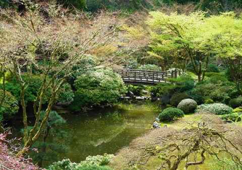 Giardini giapponesi kaiy shiki teien for Giardini in miniatura giapponesi