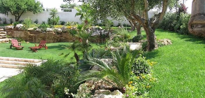 Il giardino mediterraneo le caratteristiche - Giardino mediterraneo ...