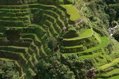 Il giardino ecosostenibile suggerimenti for Soluzioni giardino in pendenza