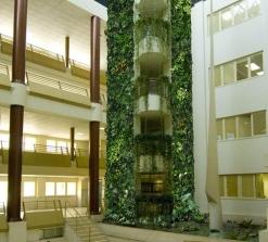 giardino verticale siviglia