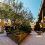Diritti e doveri con un giardino condominiale