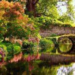 Riapre il giardino di Ninfa, il più bello del mondo
