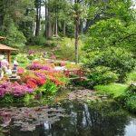 Come realizzare un giardino giapponese