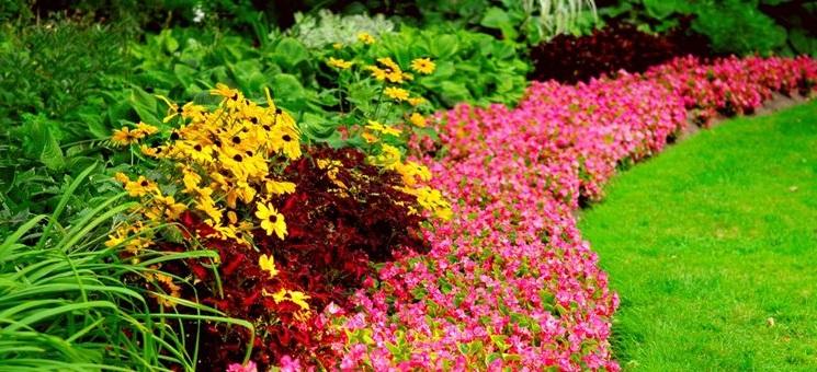 aiuole fiorite fai da te con fiori giardino