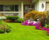 Come creare bellissime aiuole fiorite in giardino