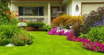 aiuole fiorite in giardino come realizzarle
