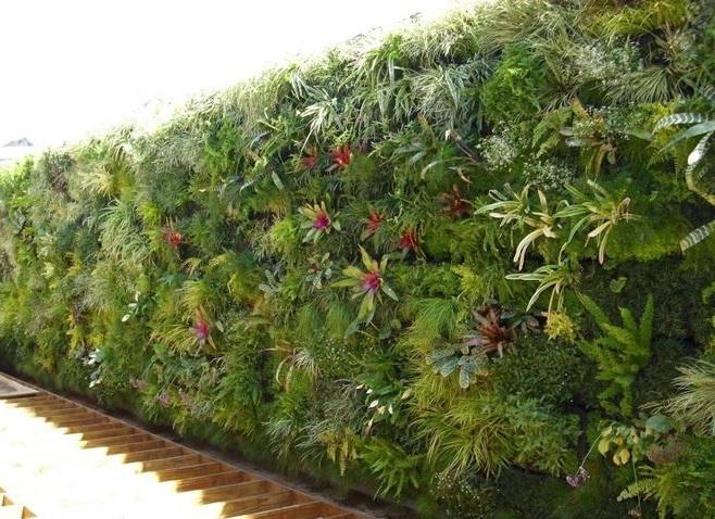 giardini verticali fai da te consigli tecniche su come realizzarli