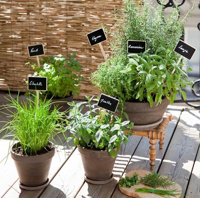 orto sul balcone serra sul terrazzo cosa piantare