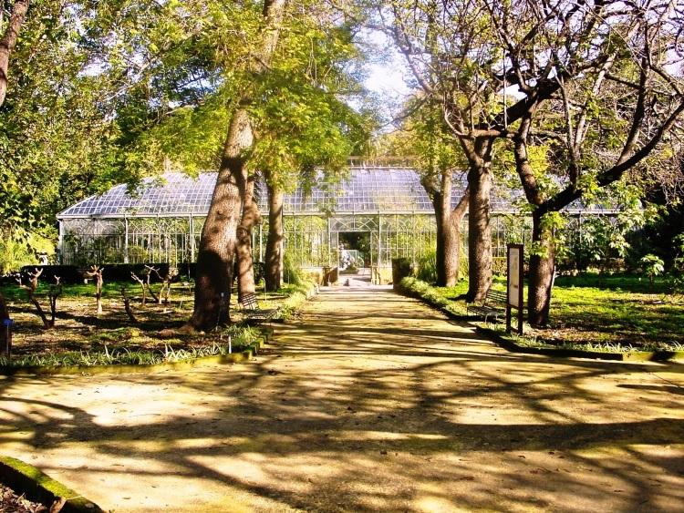 orto botanico palermo