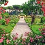 Giardini di rose e piante grasse