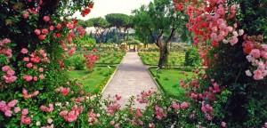 giardini di rose