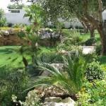 Il Giardino Mediterraneo: le caratteristiche