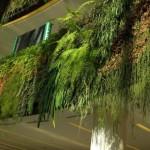 Il giardino verticale a Parigi e Londra