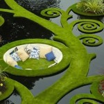 Il giardino idroponico