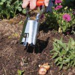 Piantabulbi in giardino: cos'è e come si usa