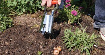 piantabulbi giardino cos'è e come si usa