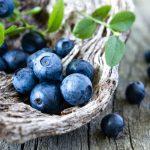 Guida alla coltivazione del mirtillo nero