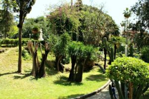 giardino inglese palermo il cuore verde della città