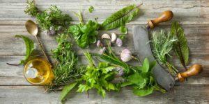 piante aromatiche in cucina