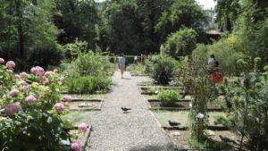 orto botanico milano arboreto brera
