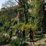 Orto botanico di Brera, il polmone verde di Milano