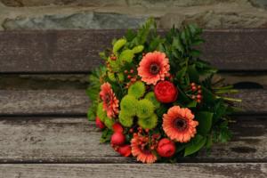 fiori autunnali 2
