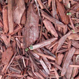 pacciamatura giardino cortecce