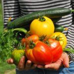 Ortoterapia: gli effetti positivi del giardinaggio sulla salute umana
