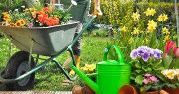 cura e manutenzione del giardino