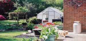 giardino per cane