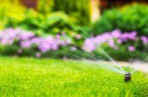 risparmiare acqua in giardino irrigazione